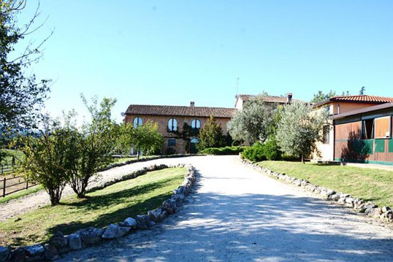 Casa padronale con scuderia e pensione per cavalli for Piani di casa con guest house annessa